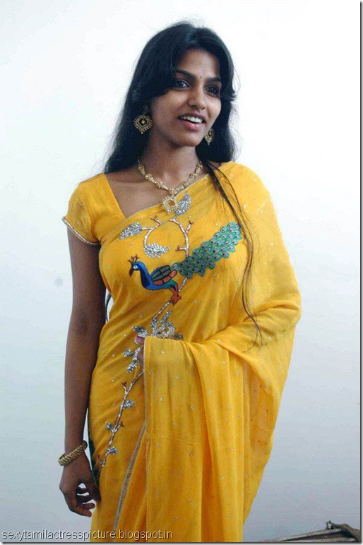 dhansika_hot_stills_in_saree