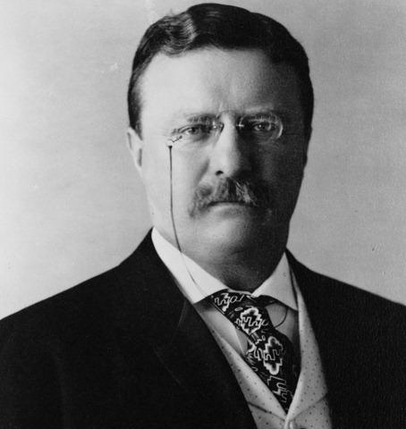 President_Theodore_Roosevelt,_1904