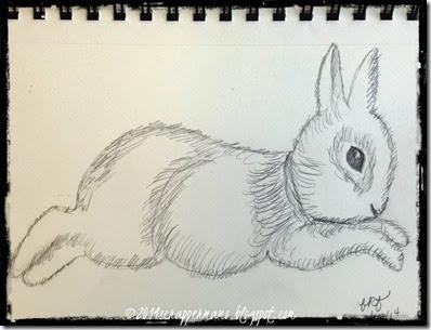 bunny sketched