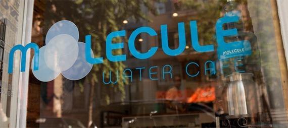 Molecule Water Cafe