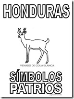 simbolos patrios honduras 1 jugarycolorear