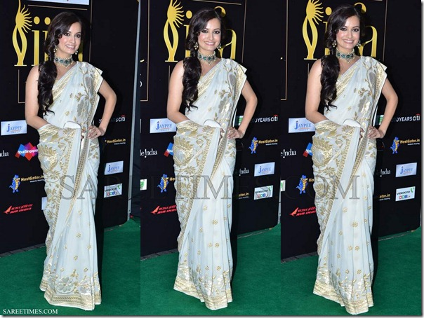 Dia_Mirza_White_Saree_IIFA_Awards