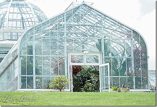 Lewis_Ginter_Conservatory3