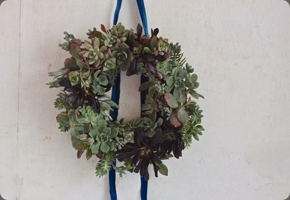 DIY succulent wreath, finished wreath