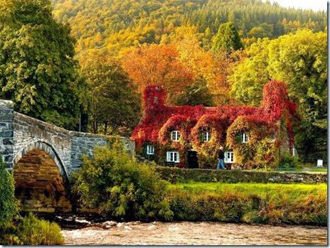 autumn-colors-fall-012