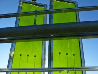 Tecnologia - Casa-de-Algas-Auto-Suficiente