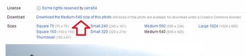 ดาวน์โหลดรูปภาพจาก flickr