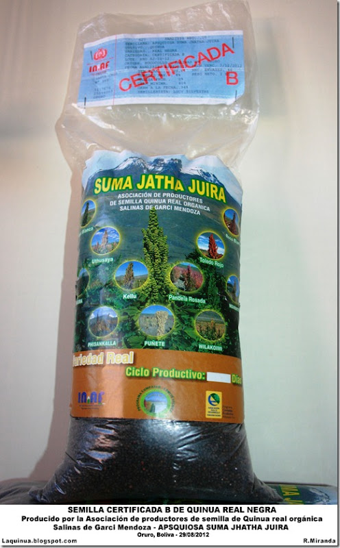 Semilla certificada B de Quinua Real Negra producido por la APSQUIOSA Suma Jatha Juira-Rubén Miranda-Laquinua.blogspot.com