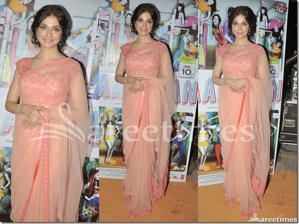 Peach_Net_Saree
