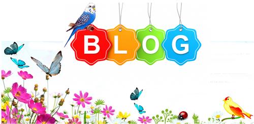 nosso blog  um jardim