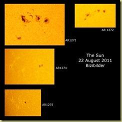 22 August 2011 AR close-ups