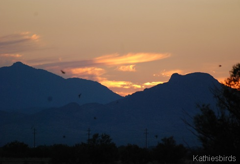 15. Lake cochise sunset-kab