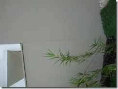 fissura-muro-externo_thumb