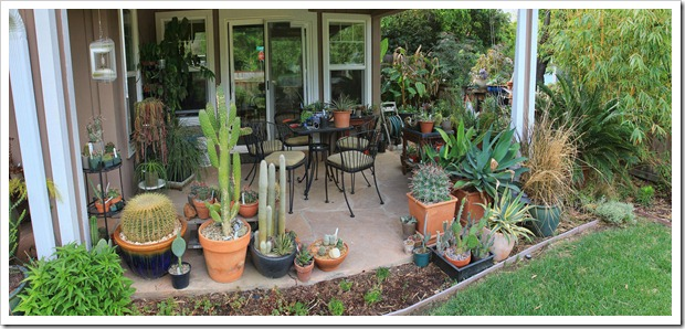 130508_frontyard_patio_pano