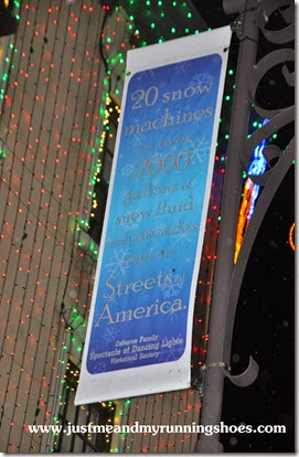 Osborne Family Spectacle of Dancing Lights (12)
