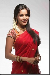 priya anand in saree still2