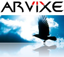 Arvixe-Bird-Flying