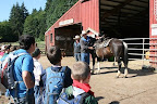 Staffers helped us learn about the parts of a horse and how to ride and steer them