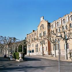 03.- Domenech. Instituto Pérez Matas