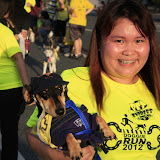 Pet Express Doggie Run 2012 Philippines. Jpg (142).JPG