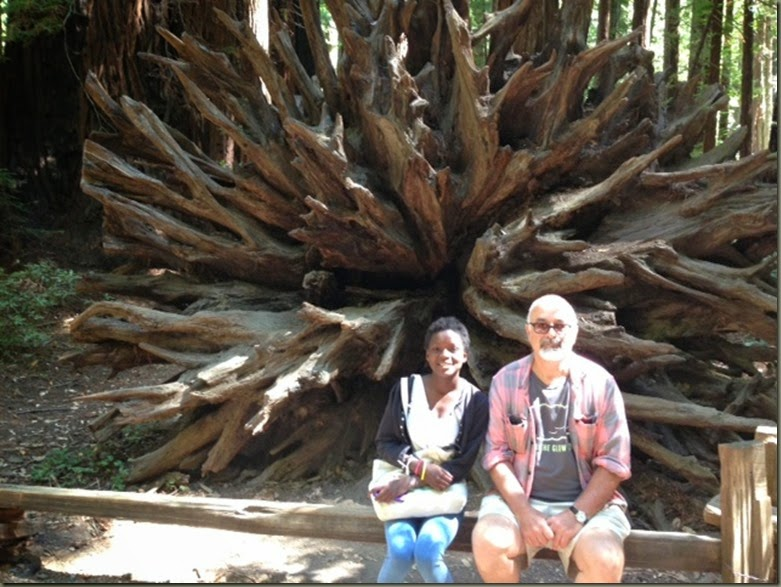 djeneba bruce roots