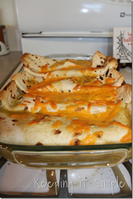 chicken enchiladas (1)