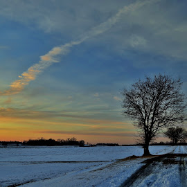The Snowy path by Tim Hall - Landscapes Prairies, Meadows & Fields ( winter, sunset, twilight, snow, dusk, prairie )