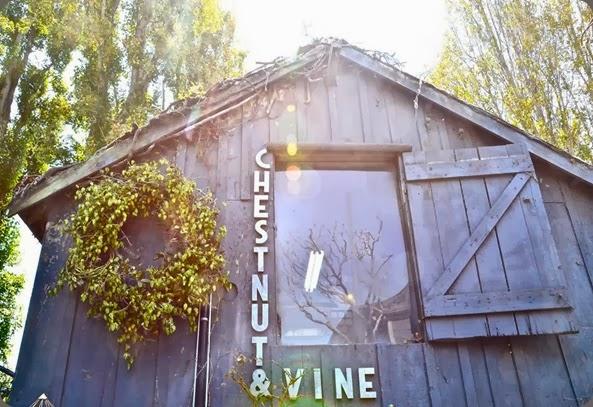 studio chestnut & vine floral design 1185320_644357222249935_888445164_n