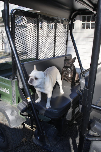 Hey Martha!  We're ready for our ride around the farm!