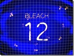 Bleach 12 Title
