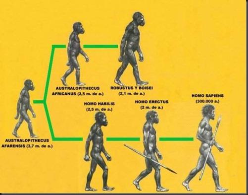 EVOLUCIONDELHOMBRE