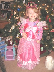Christmas Day 2012 Bellz in her princess dress in front of tree