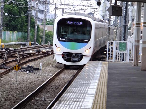 DSCF8392.JPG