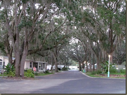 tree lined streets in older section of quail run