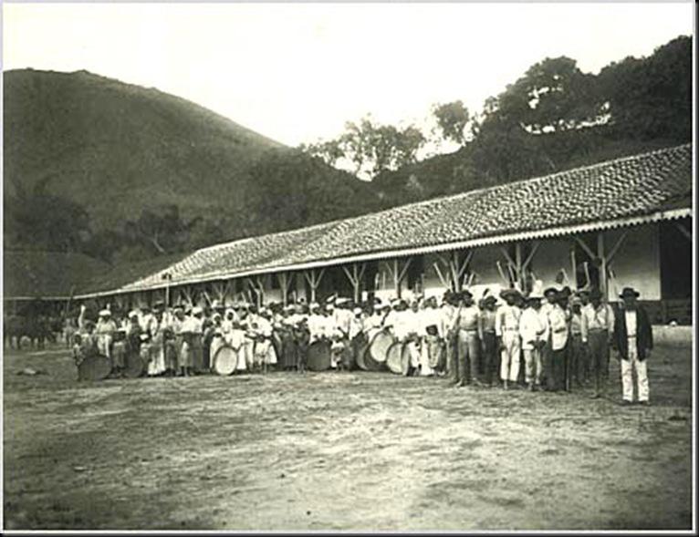 1885 - Negros escravos d'uma fazenda de café. 1