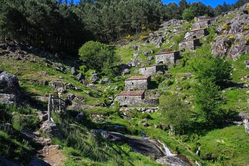 mills-folon-picon-1