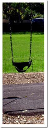 SwingDSCO2200_1010