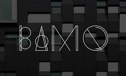 13. BAMQ