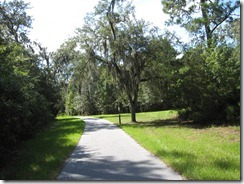 Palmetto Bluff bike path