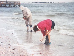 shelling on Sanibel Island2
