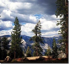 Yosemite National Park Autora Gardenia Rogatto
