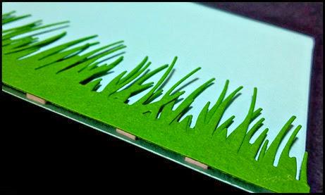 205-grass