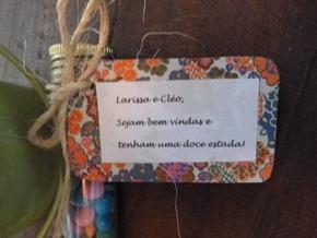 Pousada Encanto Bocaina - Sao Jose Barreiro (SP) 2012 (8)