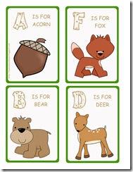 vocab cards wildlife