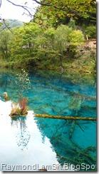 五花海4-九寨沟 Five Flower Lake 4-JiuZhai Valley National Park