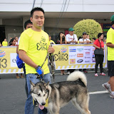 Pet Express Doggie Run 2012 Philippines. Jpg (35).JPG