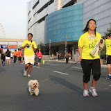 Pet Express Doggie Run 2012 Philippines. Jpg (217).JPG