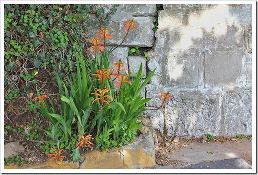 120408_Alcatraz_329