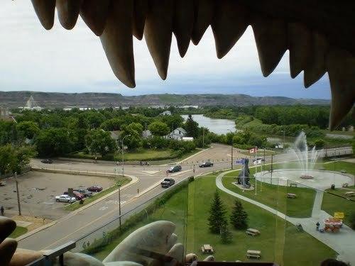 foto-dari-dalam-mulut-dinosaurus-dengan-ketinggian-26-meter
