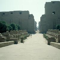 32.- Avenida de esfinges y pilonos en Karnak